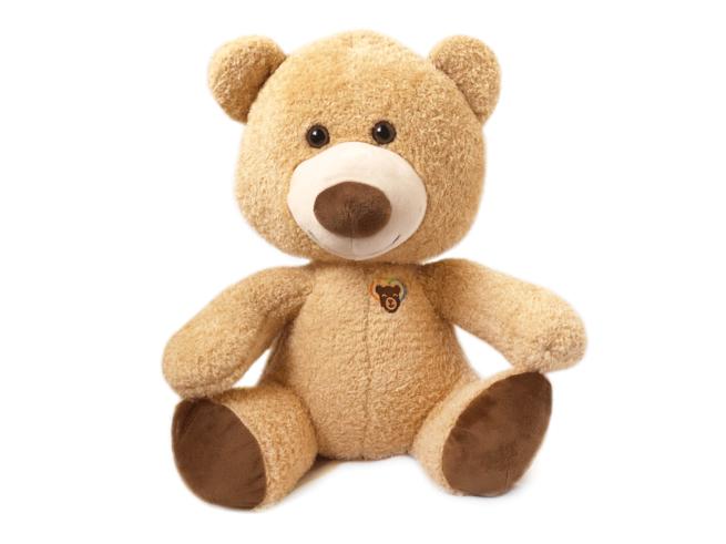 LGBTQ Brave Bear Teddy Gift